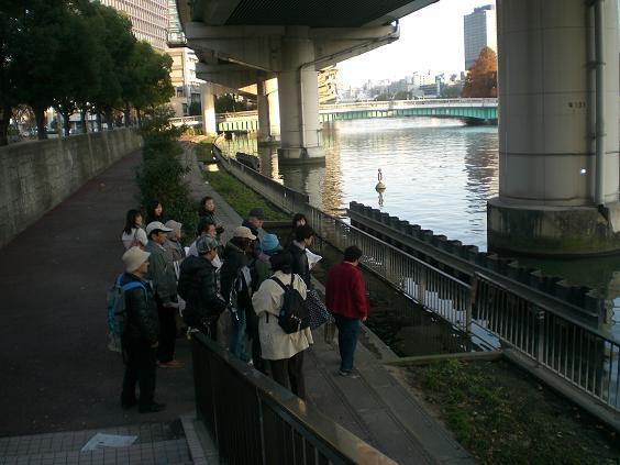 鍋島河川039.jpg